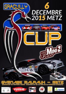 ZCUP 2015